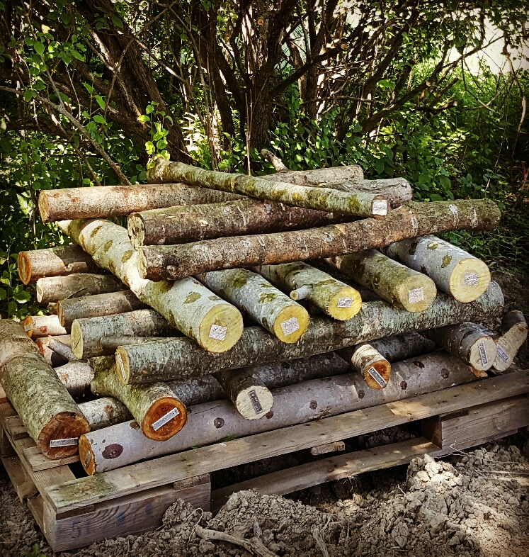 "A picture of prepared logs stacked in a ""cribbing"" formation."