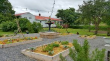 View of The Guest House B&B from the Chefs Garden